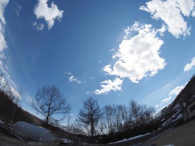 sky8mm.jpg